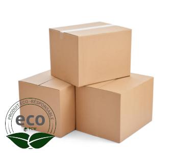 Carton Livraison Simple Cannelure 250 x 250 x 100 Mm LNE 1.1 - SC252510