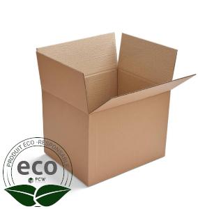 Boite Carton Format A3 430 x 310 x 100 Mm LNE 2.3 - DD433110