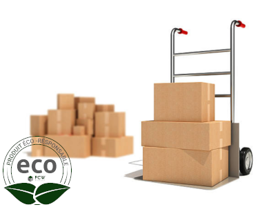 Caisses Cartons A4-A3 430 x 310 x 280 Mm LNE 1.1 - SC433128