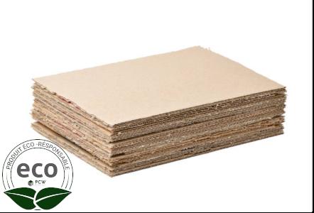 Plaque Carton 117 x 77 Cm PC10