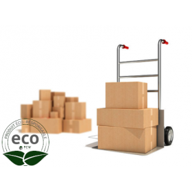 Caisses Carton Emballage 430 x 310 x 240 Mm LNE 1.1 - SC433124