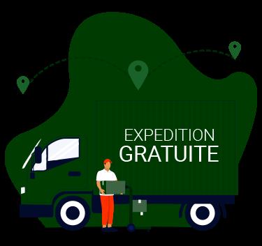 """Camion de livraison avec écrit """"expédition gratuite"""""""
